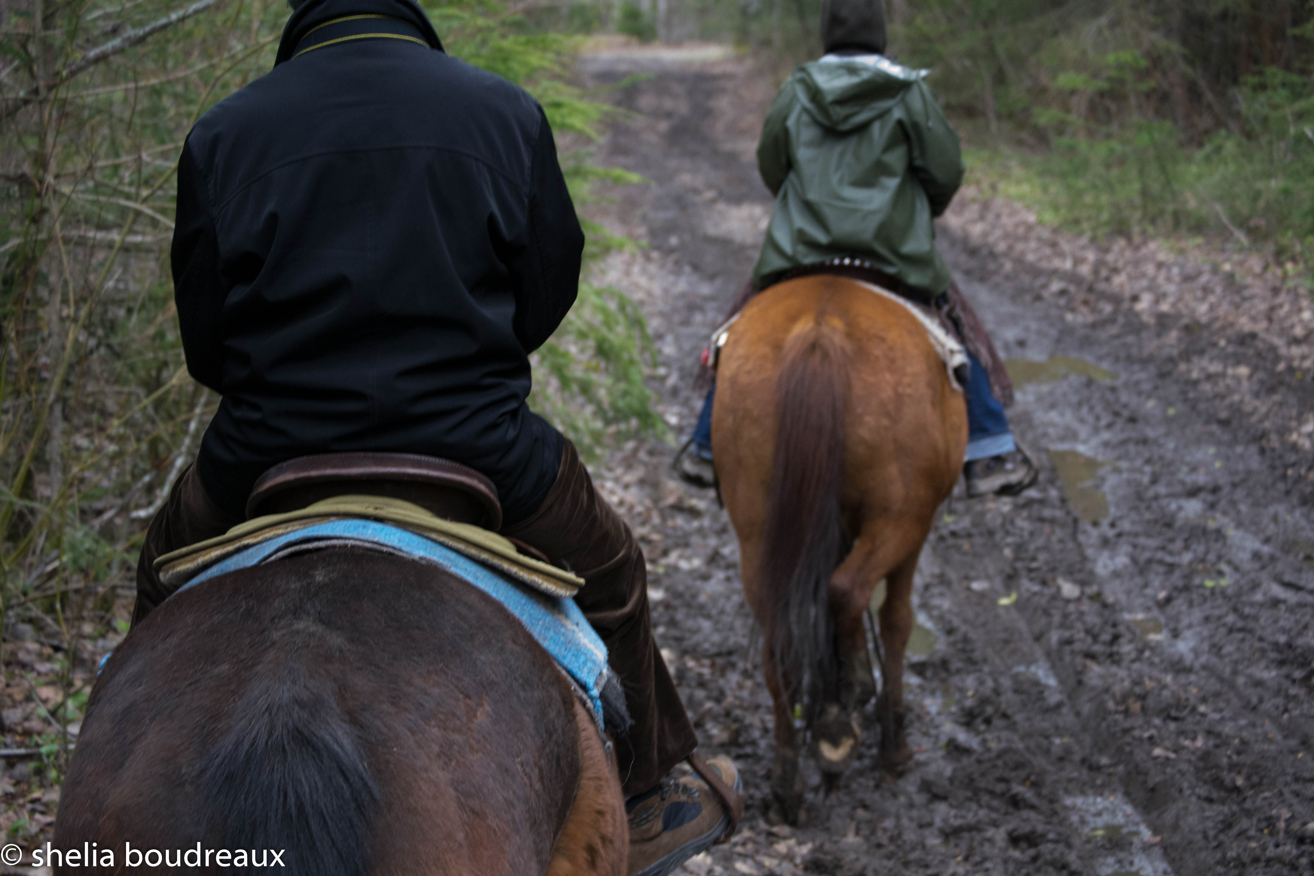 There were many muddy parts but the horses didn't mind!
